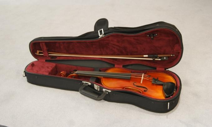 Edle Geige im gefütterten Kasten